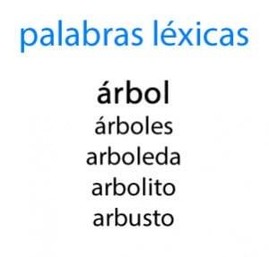 Palabras l xicas for Significado de la palabra arbol